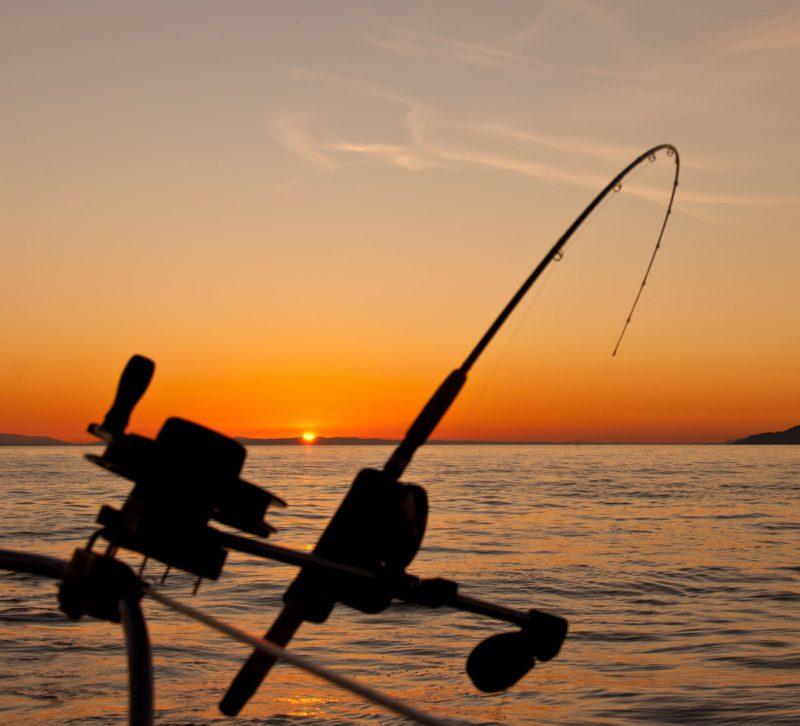 fishermanholidays.com website